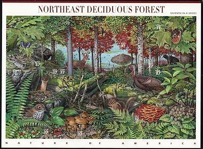 2005 NORTHEAST DECIDUOUS FOREST Nature of America 7 MNH Sheet 10 37¢ Stamps 3899