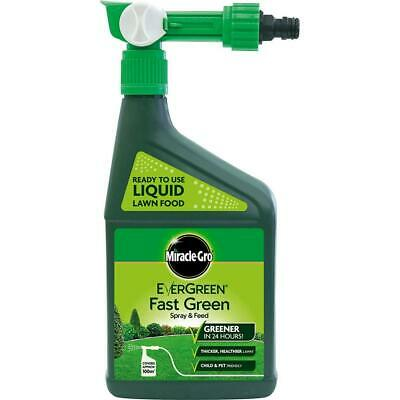 Miracle-Gro EverGreen Fast Green Spray & Feed 1L Ready to Use Garden Patio