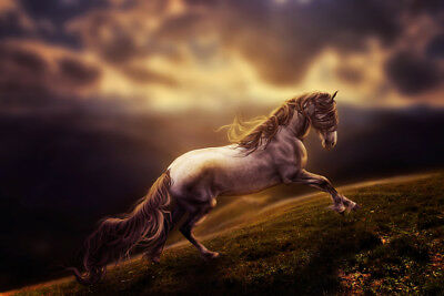 Horse Fantasy V1 LAMINATED ART POSTER 24x36in (61x91cm)