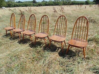 6 Ercol Solid Elm And Beech Dining Chairs Stickback *Free Delivery Vintage Retro