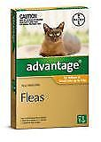 Advantage for Kittens & Small Cats up to 4kg - single pack  Expiry July 2020