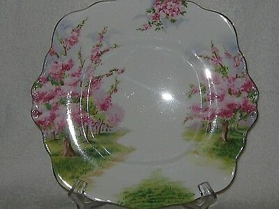 Royal Albert BLOSSOM TIME Fine Bone China Tab Handled Serving Plate