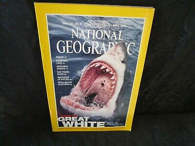 National Geographic April 2000 Sharks Yemen Chiquiblul Cave Platypus River