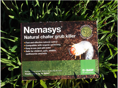 Chafer grub killer Nematodes 100sqm lawn pest yellow patches birds badgers fox