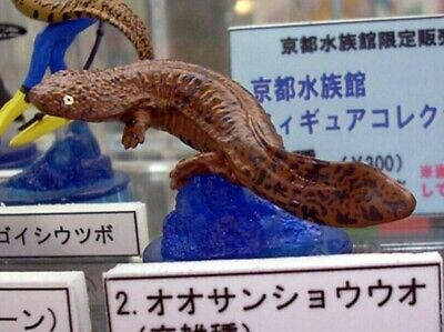 Kaiyodo Kyoto aquarium exclusive Giant salamander Brown PVC mini figurine figure