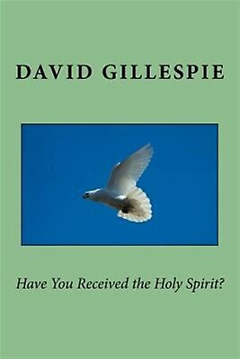 Have You Received the Holy Spirit? by Gillespie, MR David M. -Paperback