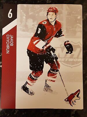 2018 Arizona Coyotes Vs Los Angeles Kings Team Sheet Programme: Ice Hockey NHL
