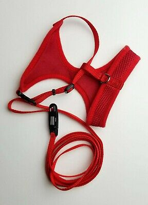 Coastal comfort soft cat harness and e-z snap leash - red