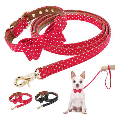 Fashion Bowtie Dog Collar Leash Soft Leather Padded Necklace for Pet Puppy Cat