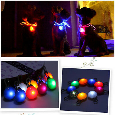 Pet Dog Cat Puppy Safety LED Clip Buckle Night Light Flashing Collar Tag Pendant