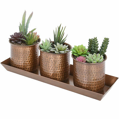 MyGift Set of 3 Hammered Bronze-Tone Metal Succulent Planter Cups with Tray