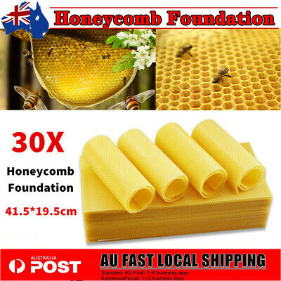 Beekeeping - 30 Sheets Beeswax Foundation Honeycomb Nest Box Foundation Tool