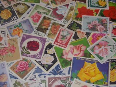 Collection  Of All Different Rose Stamps Worldwide!