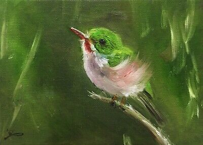 "Original Oil Painting, Animals, LITTLE BIRD, Tody 5x7"" Schelp"