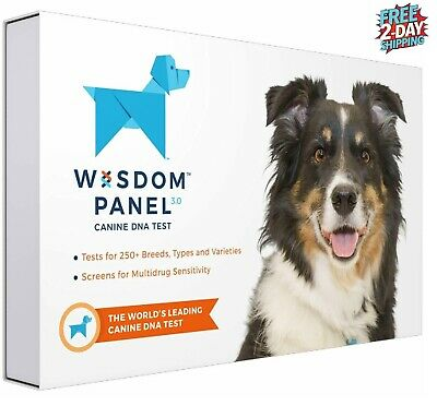 NEW Wisdom Panel Health Canine DNA Test Canine Genetic Health Test Kit for Dogs