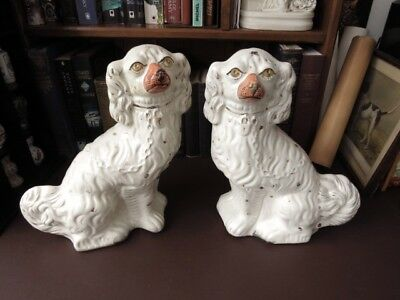Mid 19th c Staffordshire Pottery Wally Dogs / Mantle Dogs / Spaniels - Victorian