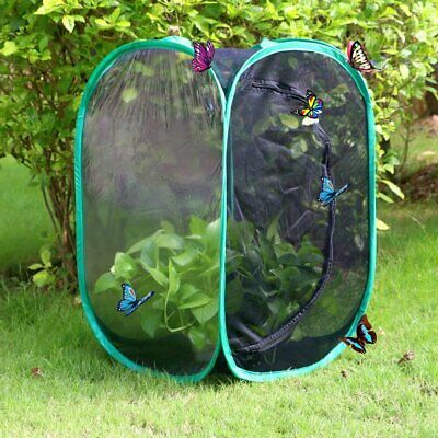 Collapsible Insect and Butterfly Habitat cage Terrarium Pop up Open 23.6 In Tall