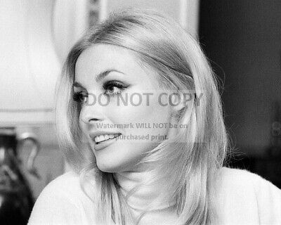 Actress Sharon Tate - 8X10 Publicity Photo (Zz-822)