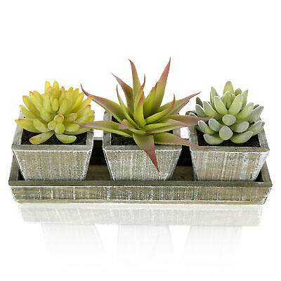 Set of 3 Mixed Artificial Succulent Plants in Rustic Brown Wooden Square Pots