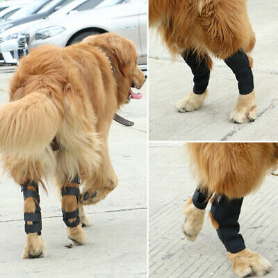 1 Pair Dog Leg Brace Hock Joint Knee Support Rear Therapeutic Pet Wrap FO