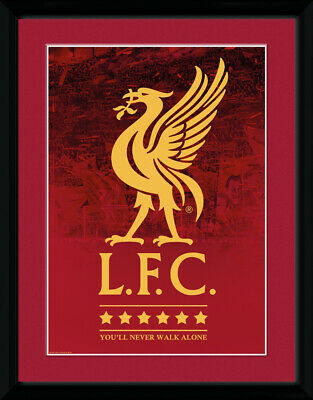 """Liverpool FC Crest and Stars 18-19 Framed Photographic Print 30.5x41cm