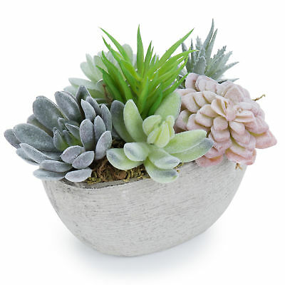 7-Inch Tabletop Artificial Succulent Plants in Decorative Oval Textured Pulp Pot