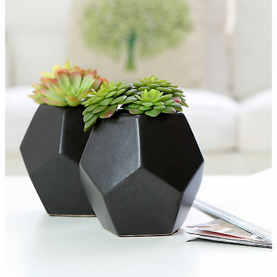 Set of 2 Artificial Succulent Plants in Matte Black Modern Geometric Ceramic Pot