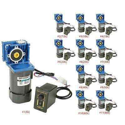 AC220V Worm Gear Motor Variable Speed Robot Gearmotor Low Speed with Governor