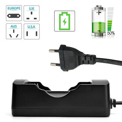 1pc Plug Battery Charger 2-Slot Convenient Smart Battery Charger For Liion LJ