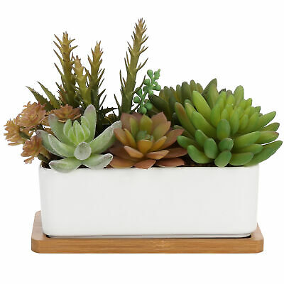 Mixed Faux Succulent Plant Arrangement in White Ceramic Pot with Bamboo Tray