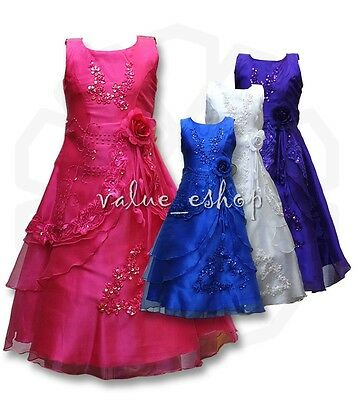 Flower Girls Dress Party Princess Formal Bridesmaid Kids Embroidered Ball Gown