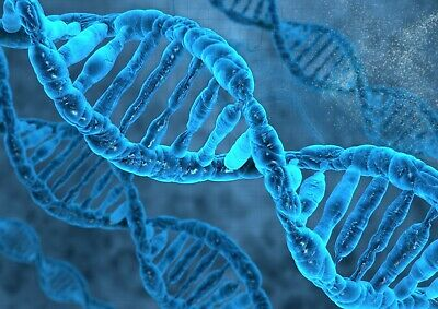 Cool Blue DNA Helix Canvas Poster Print Size A4 / A3 Biology Poster Gift #8896