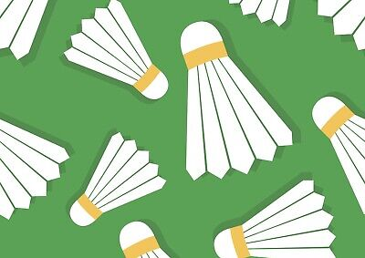 Cool Badminton Shuttlecock Poster Size A4 / A3 Racket Sports Poster Gift #8815
