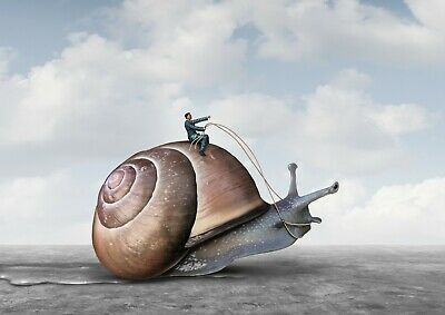 Cool Surreal Giant Snail Poster Print Size A4 / A3 Funny Mens Poster Gift #8851