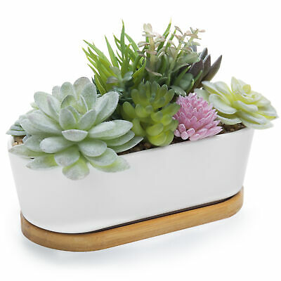 Artificial Succulent Plant Arrangement in Ceramic Trough Planter & Bamboo Tray