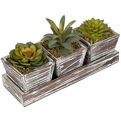 Rustic Style Artificial Succulent Torched Wood Planters Removable Tray, Set of 3