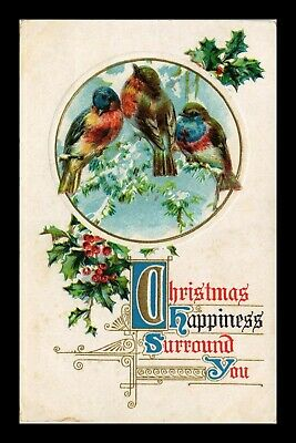 Us Postcard Christmas Greeting Embossed Birds And Holly