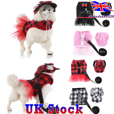 Dog Cat Outdoor Reflective Leash Pet No-Pull Harness Vest Hat Clothes Dress Rope
