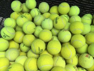 20 Used Tennis Balls - Grade A - Mostly Wilson Penn