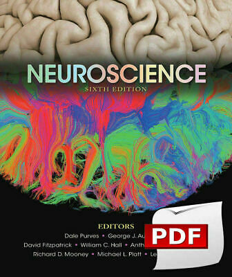 -PDF-Neuroscience 6th Edition by Dale Purves