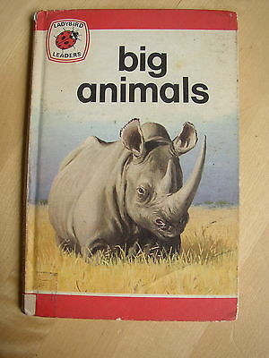 Vtg Ladybird Big Animals Matt cover Series 737 Elephant Rhino Hippo Giraffe Wild