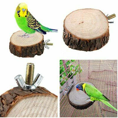 Parrot Pet Bird Round Wooden Hanging Stand Perch Platform Toys Cockatiel KU