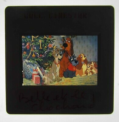 "Diapo ""La Belle et le Clochard"" des studios Disney 1955"