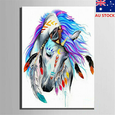 AU Framed Paint By Number Kits Painting Canvas DIY Craft Home Decor Indian Horse