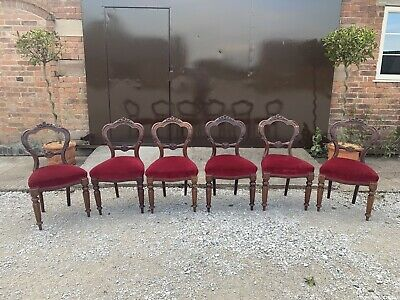 Set of 6 Antique, Exquisite & Rare Victorian Mahogany Balloon Back Dining Chairs