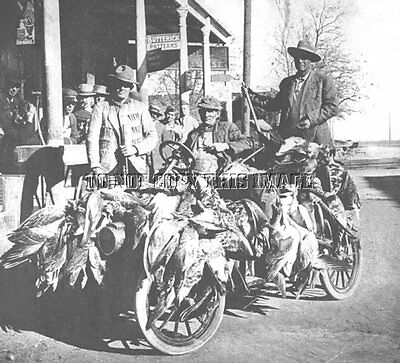 Antique Repro 8X10 Photo Duck Hunting Antique Car Covered  Ducks Goose Geese