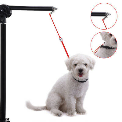 Pet Dog Cat Safe Grooming Table Arm Bath Restraint Rope Harness Noose Loop S/L