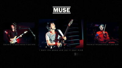 160064 Muse - Rock Band Music Wall Poster Print UK