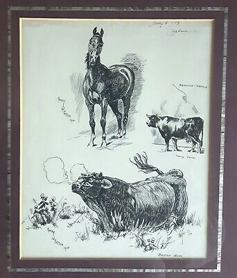Harry Potter Very Rare Pen Ink Drawings Horse & Cattle From 1914 A Wizard Buy!