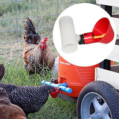 Automatic Bird Cage Poultry Chicken Coop Poultry Feeder Drinker Fountain Cup New
